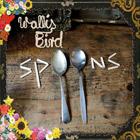 Album Cover: Spoons, Wallis Bird